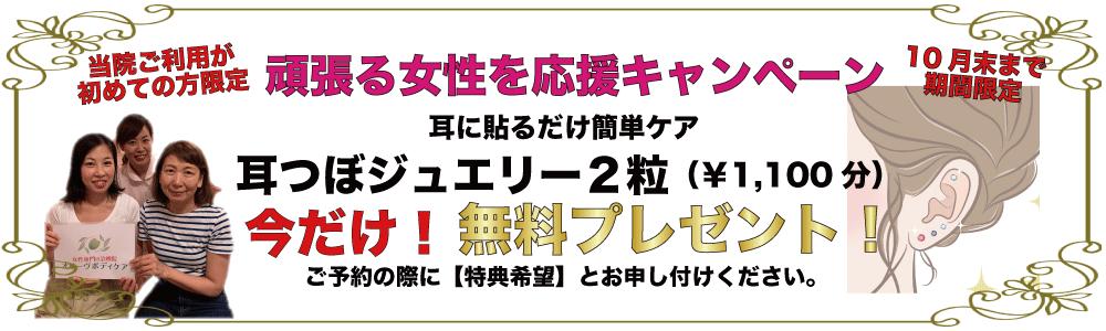 円山店キャンペーン